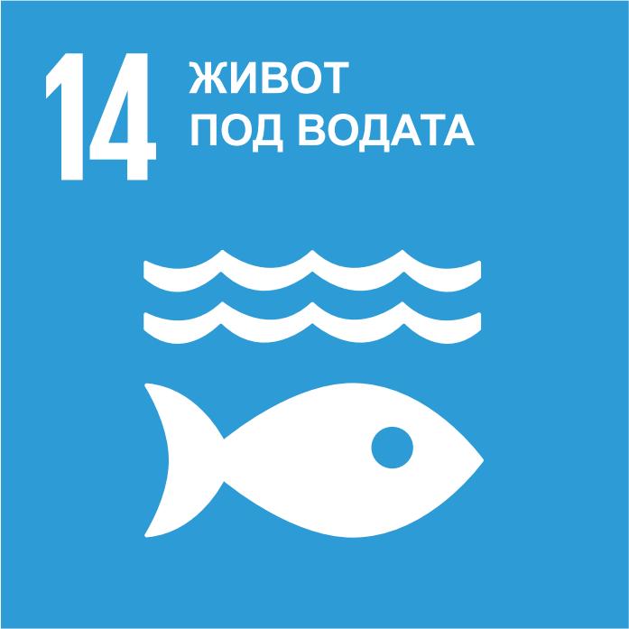 SDG 14 - Quiz