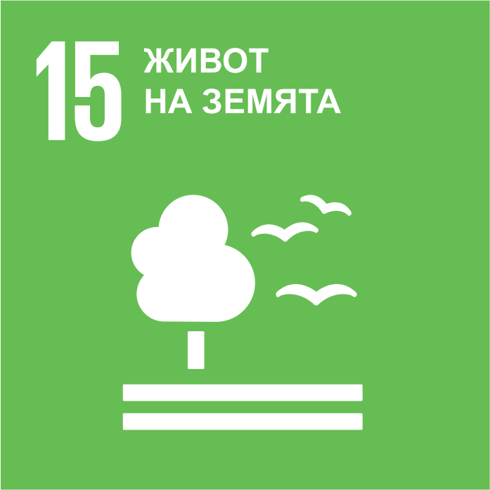 SDG 15 - Викторина (Очаквайте скоро!)