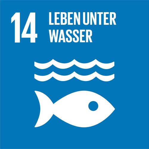 SDG 14 - Quiz (Wird bald erstellt!)