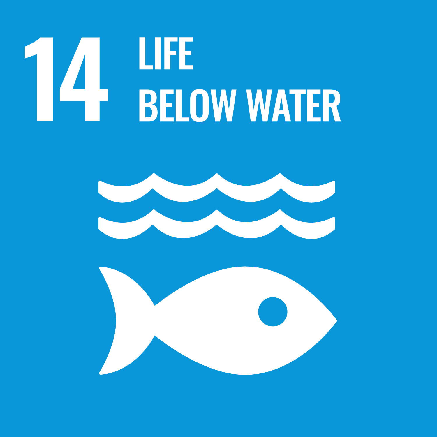 SDG 14 - Quiz (Coming soon!)