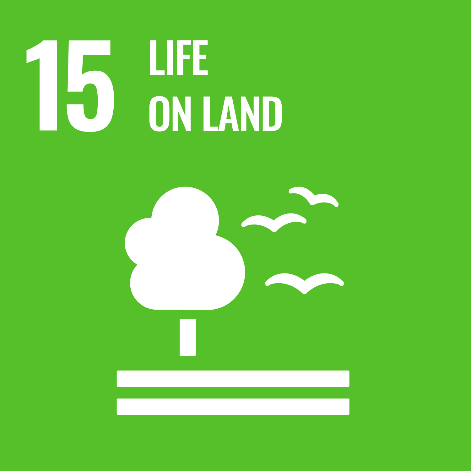 SDG 15 - Quiz (Coming soon!)