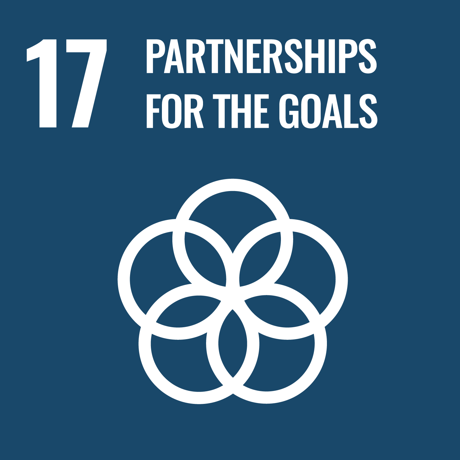 SDG 17 - Quiz (Coming soon!)