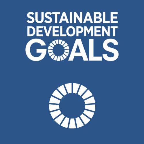 SDG 18 - Quiz